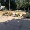 Керчанин подсказал адреса стихийных свалок