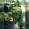 Открытые люки на Заречной улице замаскированы травой