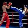 Кикбоксеры показали мастерство на ринге