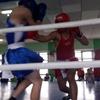 Керченский боксер привез победу из Башкортостана