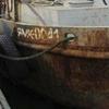 Киев просит свободы пойманным у Крыма браконьерам