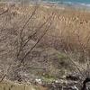 Оползневая зона в Аршинцево отойдет в собственность Керчи