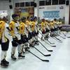 Керченские хоккеисты стартовали с поражения в НХЛ