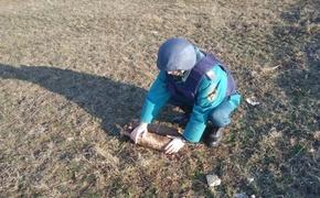 В Керчи и Феодосии нашли несколько авибомб