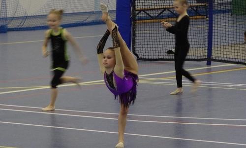 Юные керченские гимнастки привезли медали из Евпатории
