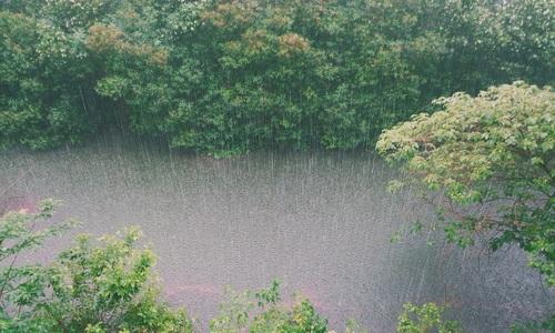 Сегодня на Крым обрушится ливень