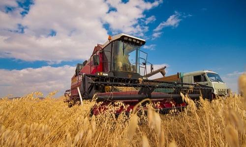 За год сельское хозяйство Крыма получило 2,5 миллиарда