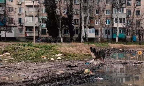 Керчане сняли мрачный ролик о своем городе