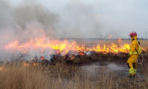 Посевы в Ленинском районе спасли от пожара