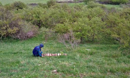 Близ села Багерово вновь откопали снаряды времен войны