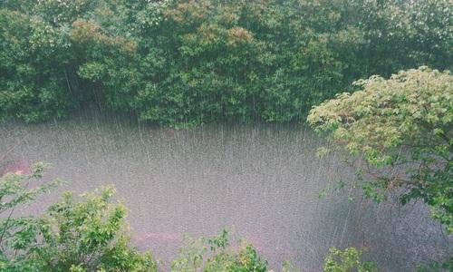 Крымский полуостров зальет дождями