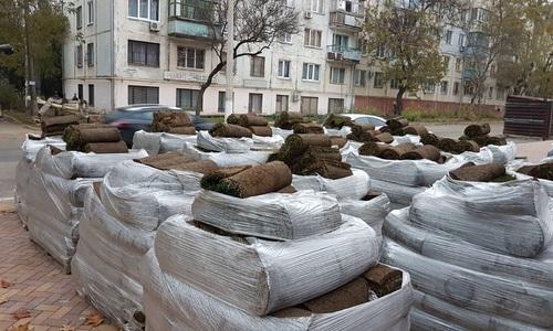 В Комсомольский парк завезли рулонный газон