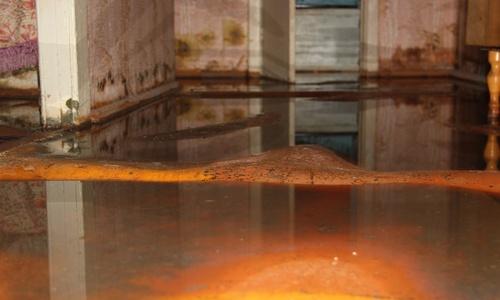 канализация затопила квартиру