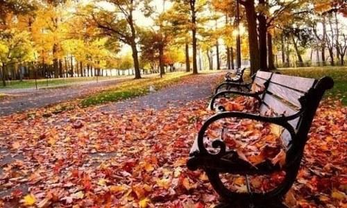 Керчан ждет теплый и сухой ноябрь
