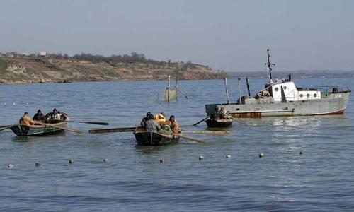 Рыбной промышленности в Керчи «капут»?