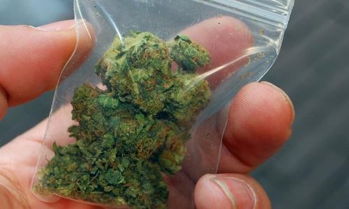 Крымского ФСБшника поймали с марихуаной