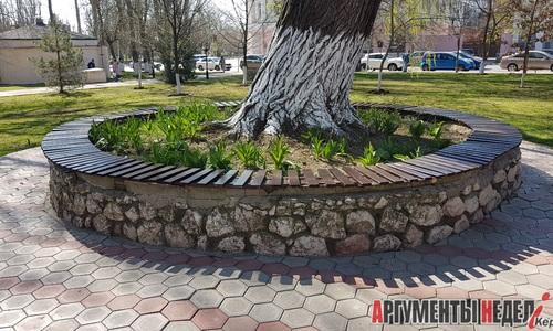 Сломанную скамейку у вяза в Керчи починили