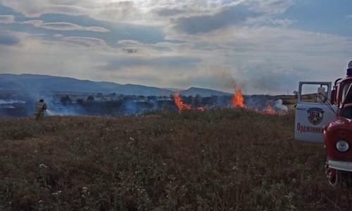 Ежедневно в Крыму фиксируют 20 возгораний