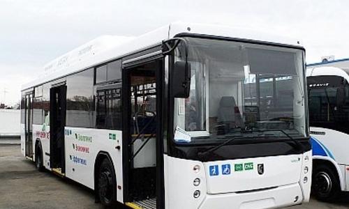 Сорок автобусов все же приедут в Керчь
