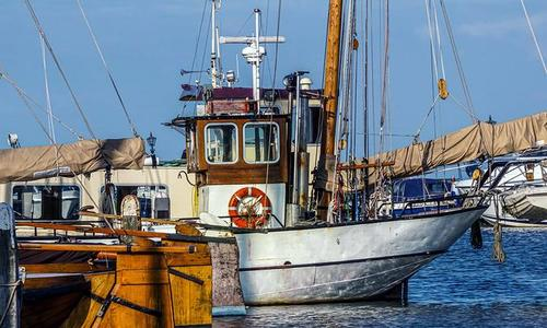 В Черном море затонул корабль и 30 тонн хамсы