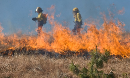 Крымчан предупредили о продлении пожароопасного периода